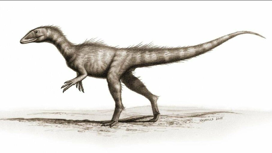 An artist's rendering of what a live Dracoraptor hanigani may have looked like. Bob Nicholls