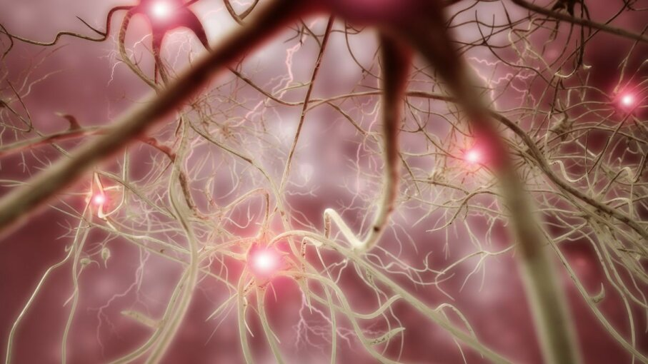 Interconnected neurons transfer information with electrical pulses. The neural tourniquet hopes to control internal bleeding though electric pulses. 4X-image/Getty Images
