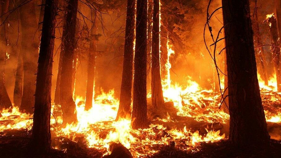 The 2013 Rim fire in and near Yosemite National Park, California, was the third largest in the state's history, burning more than 250,000 acres. New technology could detect fires like this before they get out of control. USFS/Mike McMillan