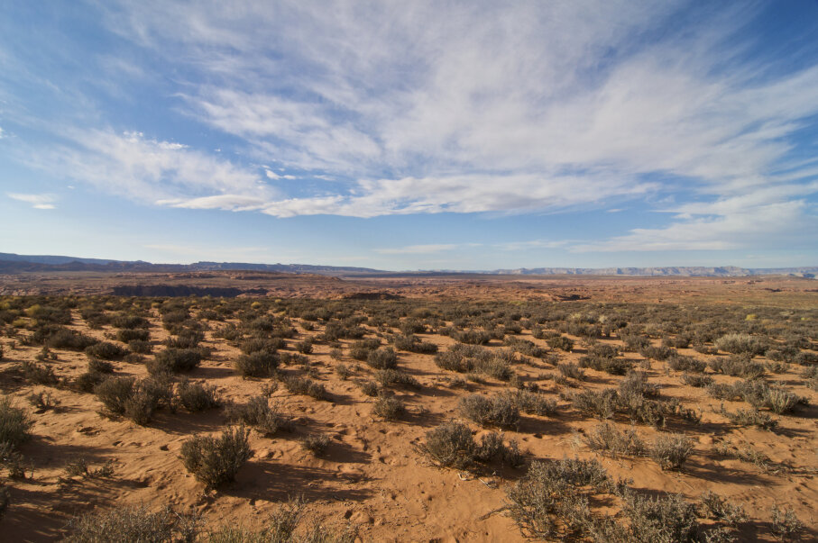 The Arizona desert is vast.