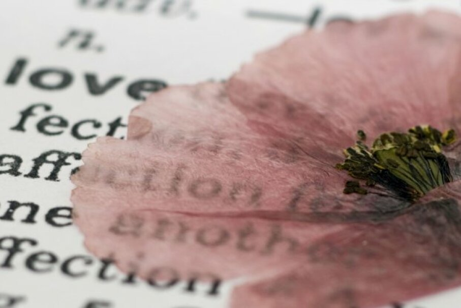 One of the best things about pressed flowers in stumbling across a forgotten bloom in an old book. ©iStockphoto/Thinkstock