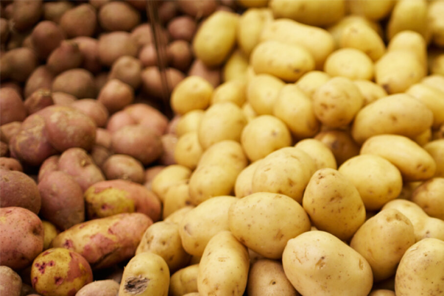 A compound found in potatoes called solanine can cause stomach pains and even paralysis. © Randy Faris/Corbis