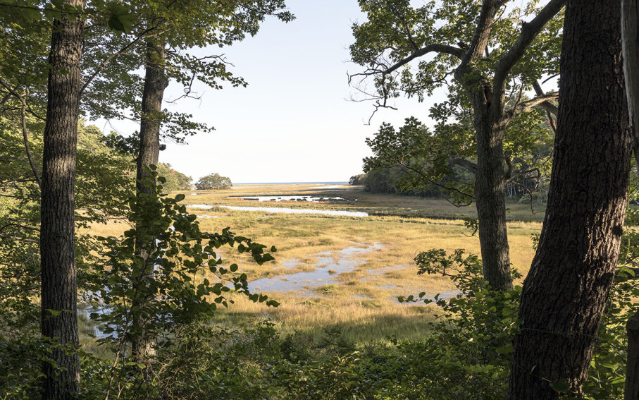 Rachel Carson National Wildlife Refuge