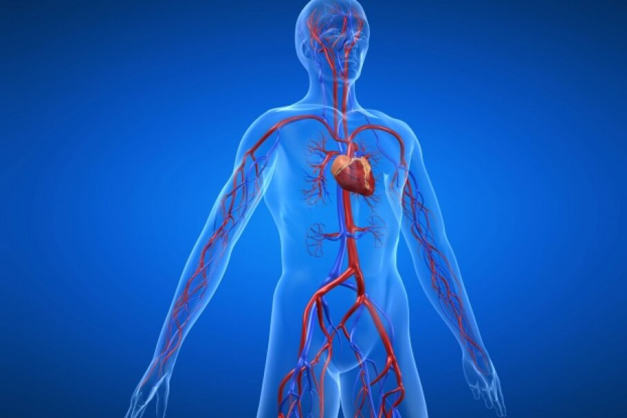Cardiovascular disease is no joke. Counter your lounging time with activity to help keep your ticker healthy. © Sebastian Kaulitzki/Hemera/Thinkstock