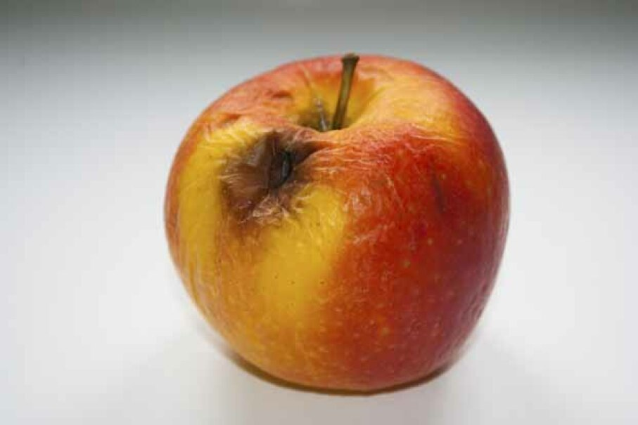 A patient with diabetic ketoacidosis emits an smell that's been likened to rotting apples. BranislavP/iStock/Thinkstock