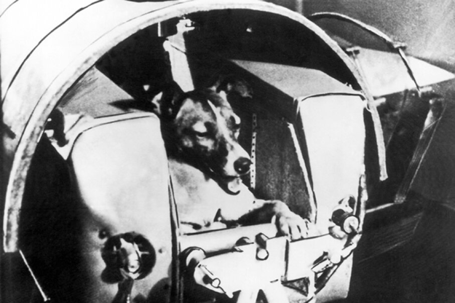 The Soviets launched Laika the dog into space, but weren't truthful about how the mutt died on her fateful mission. Keystone-France/Gamma-Keystone via Getty Images