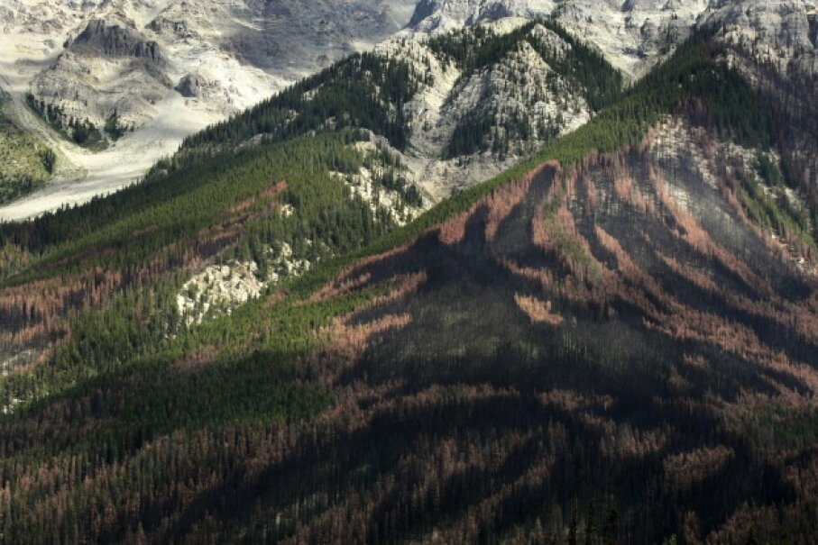 You can see an unusual pattern left by a forest fire on the side of a mountain in Yoho National Park in British Columbia. The fire was a controlled burn of forest areas infested with the mountain pine beetle. © Andy Clark/Reuters/Corbis