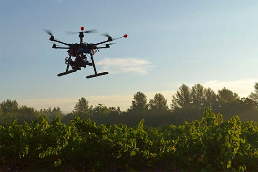 Drones, like this one filming a vineyard, alert growers to problems not visible from ground level, like fungal infestations. Sami Sarkis/Getty Images