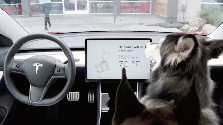 Tesla Dog Mode Keeps Pets Cool In Locked Cars Howstuffworks