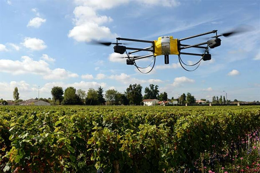 A UAV flies over a vineyard in Bordeaux, France; it is equipped with an infrared camera to determine the optimal maturity of the grapes, allowing them to be harvested at different times. JEAN PIERRE MULLER/AFP/Getty Images