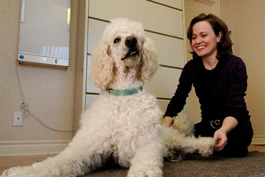 Dr. Finella Ely works as a chiropractor to dogs as well as humans. What other unique careers are on our list? Keith Beaty/Toronto Star via Getty Images