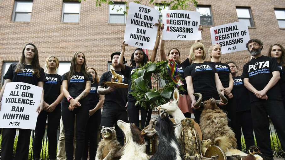 PETA supporters stand with taxidermy animals during a demonstration calling for the end to gun violence outside of the National Rifle Association on June 17, 2016 in Washington, D.C. MANDEL NGAN/AFP/Getty Images