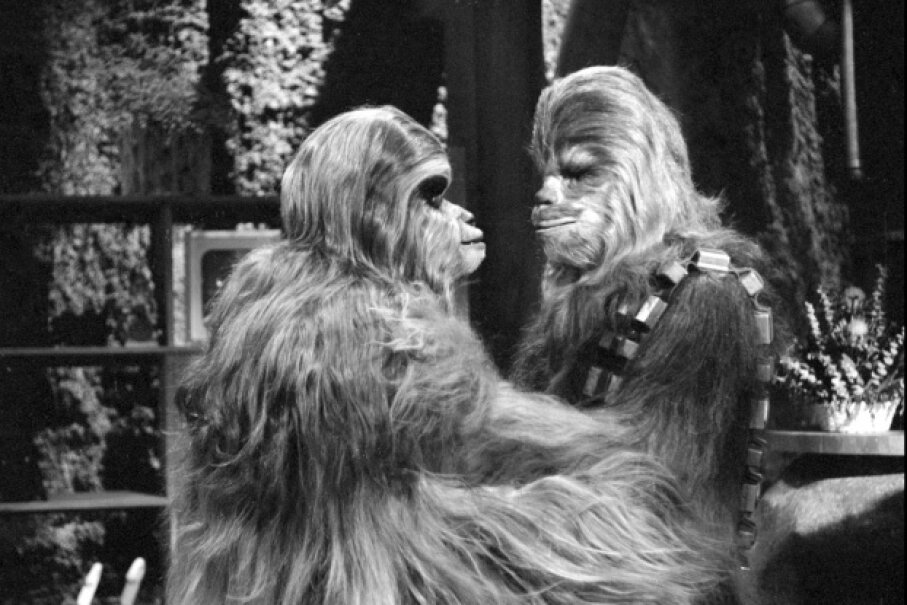 Mickey Morton (as Malla) and Peter Mayhew (as Chewbacca) starred in George Lucas' least-favorite production ever to exist. CBS via Getty Images