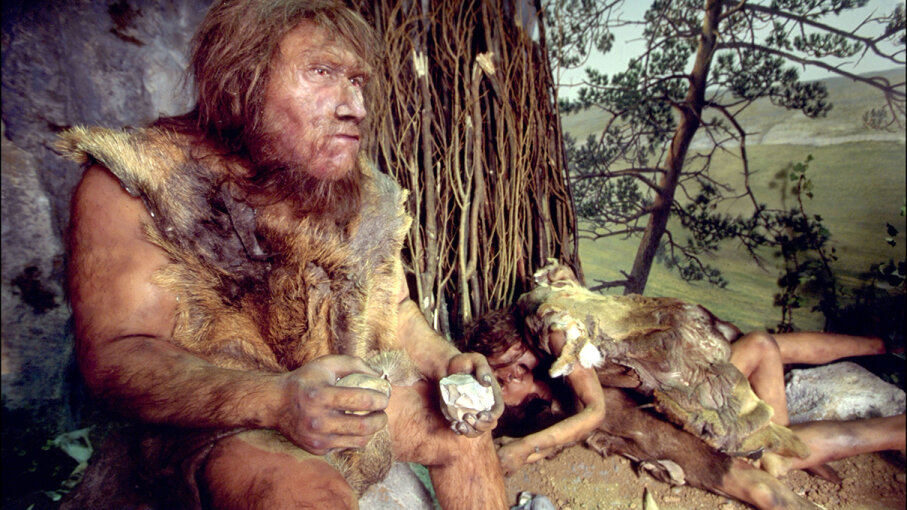 Neanderthals used a specially made glue to craft many of their tools. Xavier ROSSI/Gamma-Rapho via Getty Images